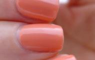 IQ cosmetics 6 Coral